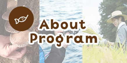 About Program